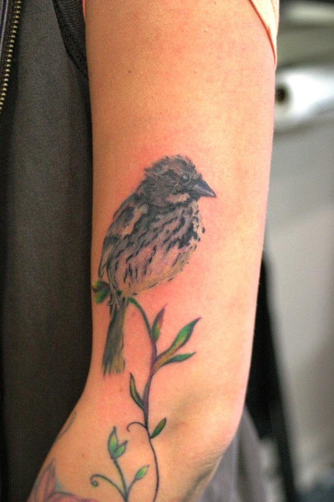 Image Result For Bird Tattoo Hip