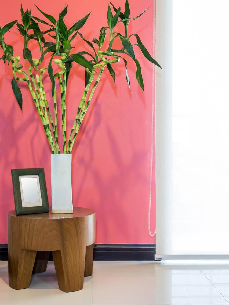 Feng Shui in decoration (1)